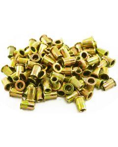 100 Piece 1/4-20 Steel Rivet Nuts