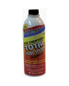 Fuel System Clean Up