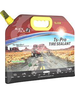 1 gallon Tire Sealant, Pouch
